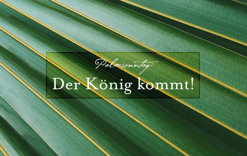 Palmsonntag: Jesus bietet Frieden an